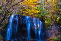 名瀑の枯れ紅葉