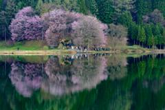 中綱湖のカメラマン
