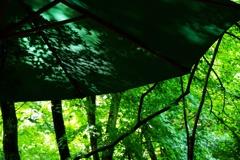 雨上がりのテラス