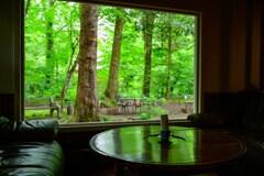 新緑の窓辺