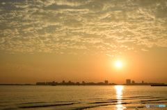 三番瀬の夕日7