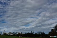 三番瀬雲2