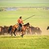 馬を狙う牧童