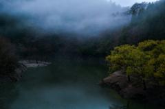夜明けの雨霧