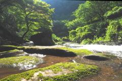 王滝渓谷のうららかな光