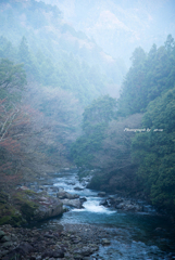 朝靄の渓流