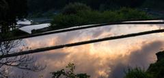 棚田の夕雲