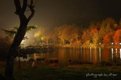 ライトアップの秋景色
