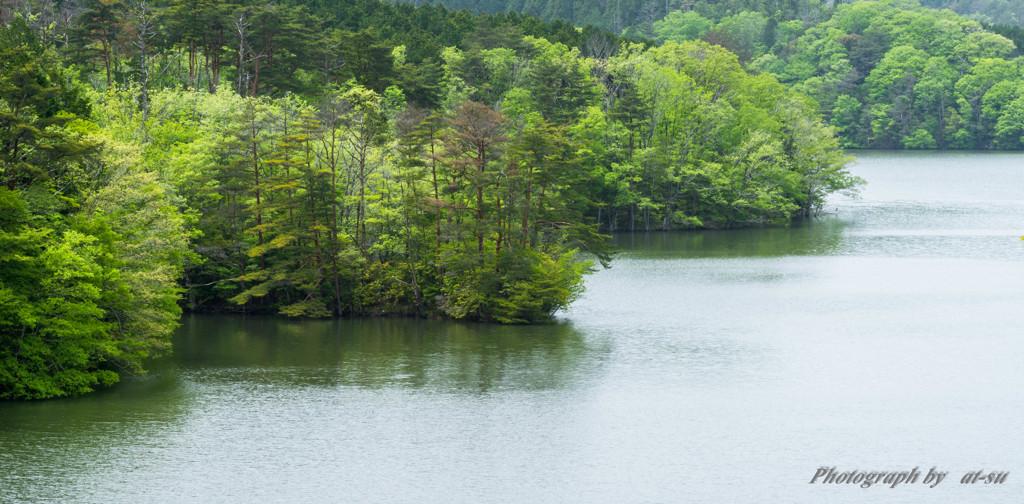 リアス式湖畔