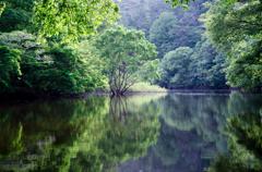 水を取り巻く自然