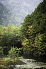 初秋の水辺2