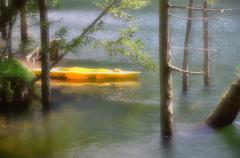 湖の黄色いカヤック