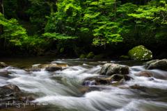 巴川の流れ