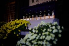 東京の地酒