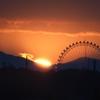 ランドと夕陽