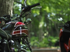 森のバイク ゼブタク編
