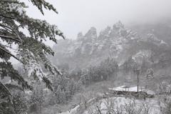 さくらの里 雪景