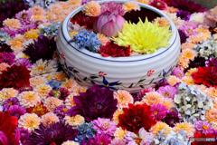 岡寺の華の鉢
