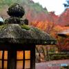 愛宕(おたぎ)念仏寺2