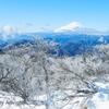 冠雪の景色