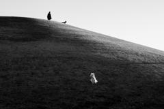 午後の丘 風の側で