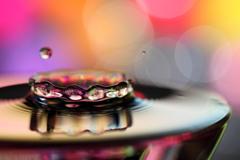 蔦模様の指輪