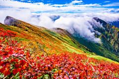 紅葉と滝雲