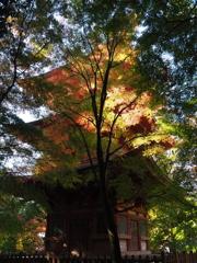 ライトアップに非ず 神戸 北区