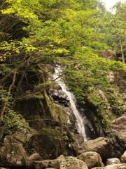黒岩の滝1 兵庫 神河町