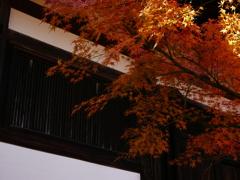 紅葉 神戸 北区