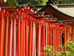 根津神社3 文京区