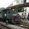 坊っちゃん列車1