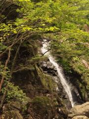 黒岩の滝3 兵庫 神河町