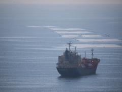 第二新珠丸 LNG内航船