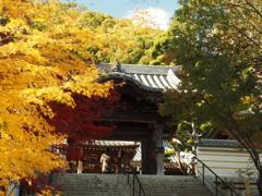須磨寺4 神戸