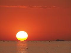 ダルマにならず  播磨灘 20200223