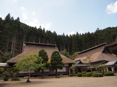 慧日寺1 兵庫 山南