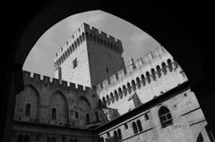 Avignon (Palais des Papes)