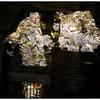 「田谷堰の桜」小江戸川越散歩402