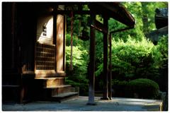 「新緑の候」 小江戸川越散歩161