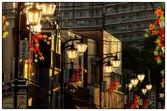 「隙間の光」 小江戸川越散歩204