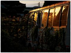 「秋の夕日に」小江戸川越散歩205