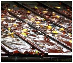 「屋根の上の秋」小江戸川越散歩200