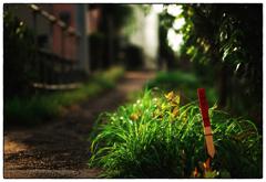 「単純な疑問」 小江戸川越散歩310