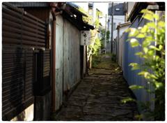 「明後日の夕方」小江戸川越散歩170