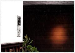 「雨の日散歩のススメ」 小江戸川越散歩211