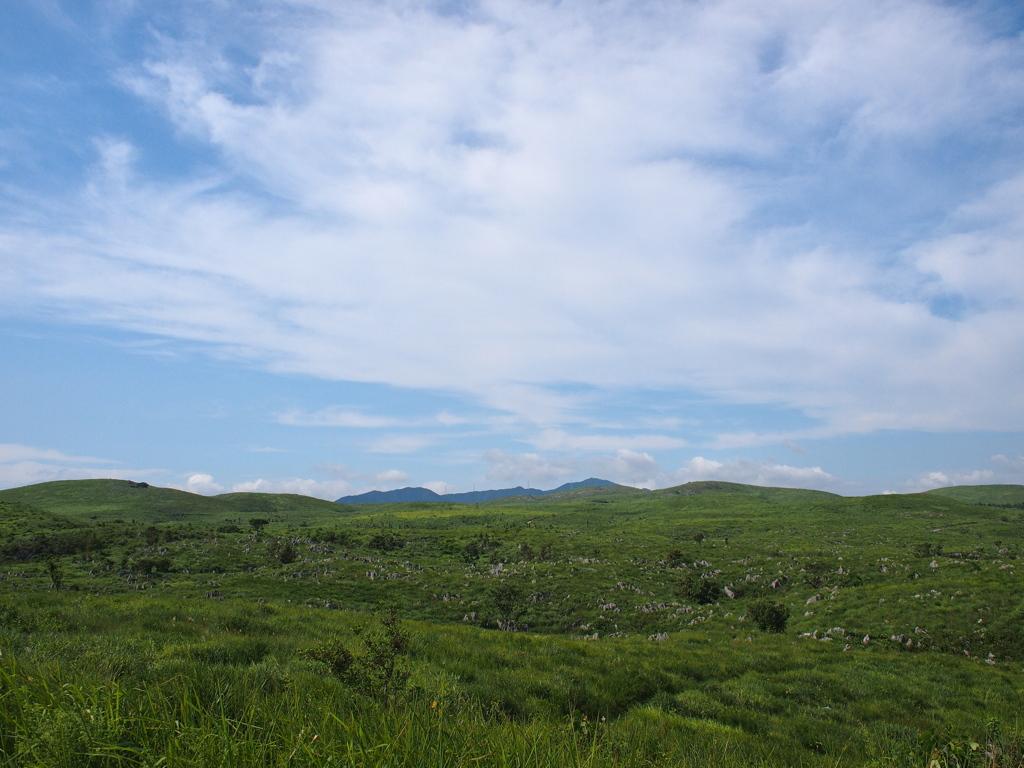 夏の終わりの草原