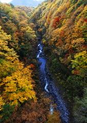 秋の中津川渓谷