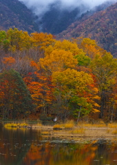 観音沼の秋