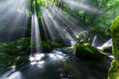 Light and stream
